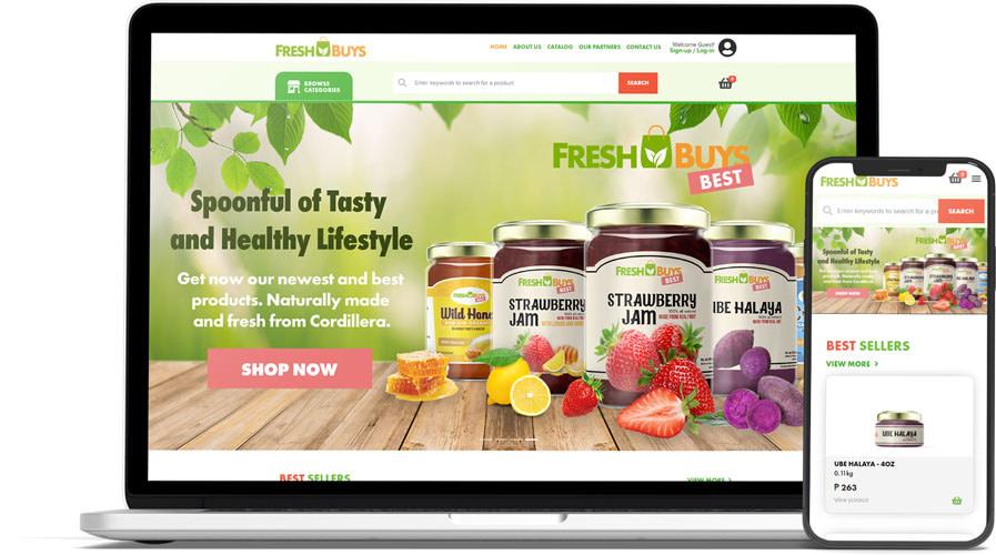 Premium Web Design 11